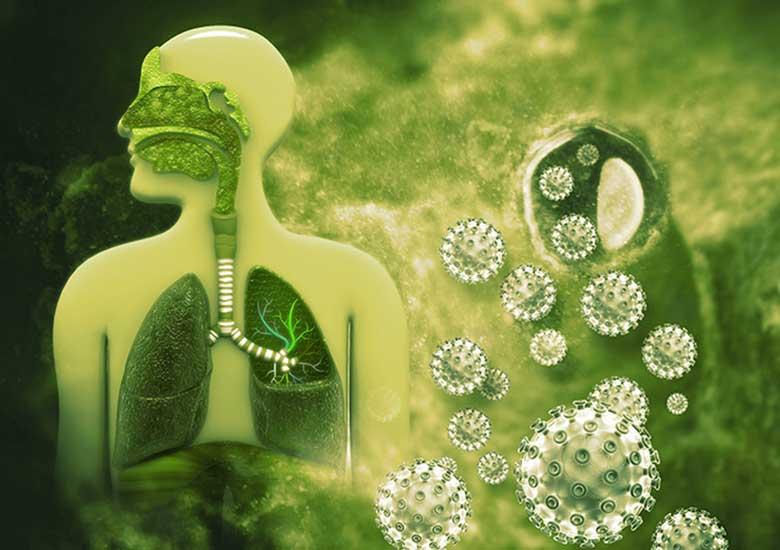 Información sobre el coronavirus de Wuhan